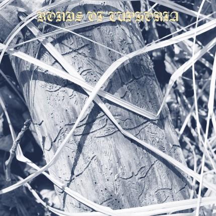 Abest - Bonds Of Euphoria LP