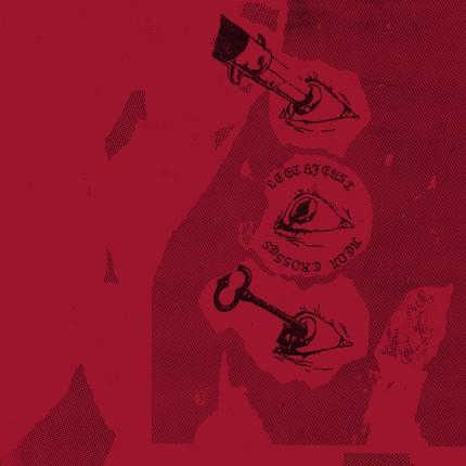 Leechfeast - Neon Crosses LP