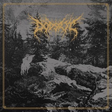 Dödsrit - Mortal Coil LP (2 Versions)